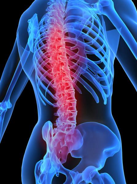 Le chiropracteur pour votre colonne vertébrale