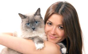 comment prendre soin de son chat quand il attend des petits ?